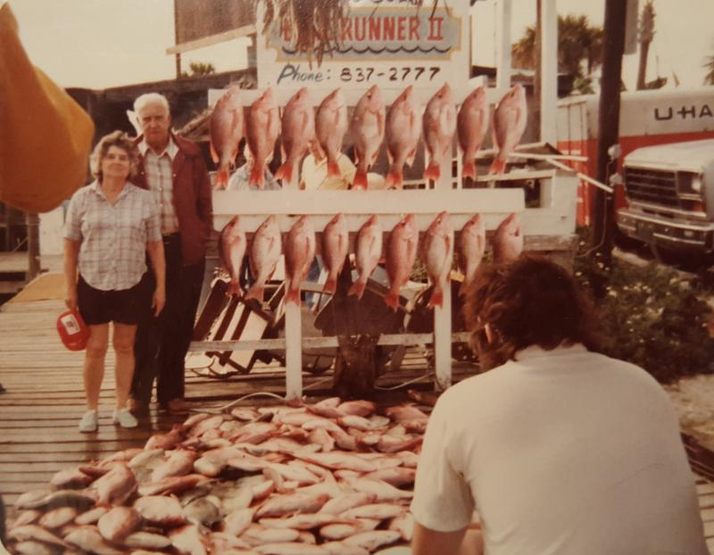 Click to enlarge image  - A days catch of snapper -